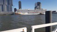 rotterdam-cruise