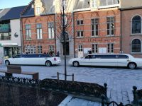 twee-limousines-huwelijk-voor-gemeentehuis